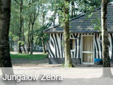 Zebra Jungalow