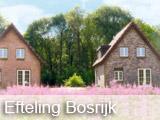 Efteling Bosrijk - Arrangementen