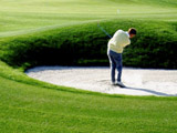 Bosrijk Efteling Golf Musical Arrangement
