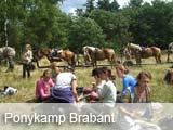 Ponykamp Brabant