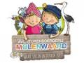 Een ticket voor Avonturenpark Molenwaard €7,50 (40% korting)!