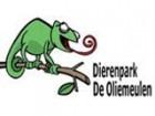 Win gratis De Oliemeulen kaartjes!