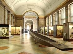 Museum Tervuren