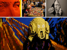 The Art Of The Brick Nederland