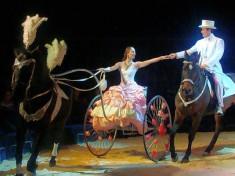Circus Nederland
