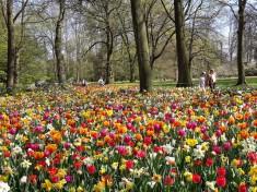 Floralia Brussels
