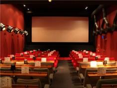 Gotcha Cinema Nederland