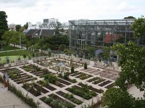 logo Hortus Botanicus Leiden