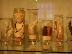Museum Leiden
