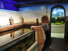 Aquarium Delfzijl