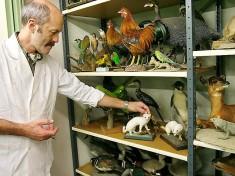 Natuurmuseum Friesland Nederland