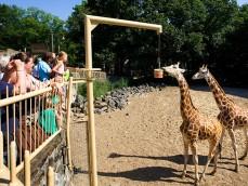 Ouwehands Dierenpark foto 1