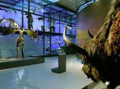 Museum Enschede