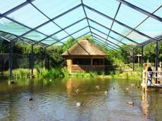 Vogelpark Marlow foto 1