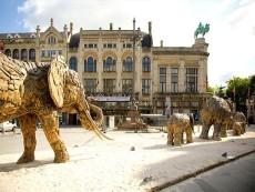 Zoo Antwerpen foto 1
