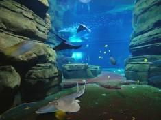 Aquarium Berlijn