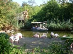 Zoo Hannover Deutschland