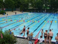 Zwembad Bodegraven
